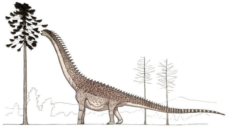Питание футалогнкозавра