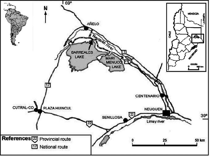 Место находки футалогнкозавра в Патагонии