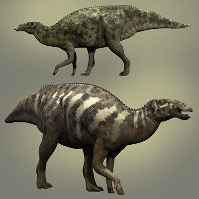 У эдмонтозавра за жизнь сменялось более 1000 зубов