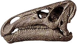 череп игуанодона