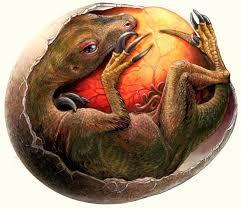 Толщина скорлупы яиц жинозавров