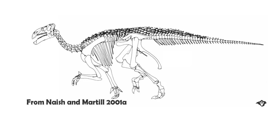 реконструкция скелета игуанодона, 2001 г.