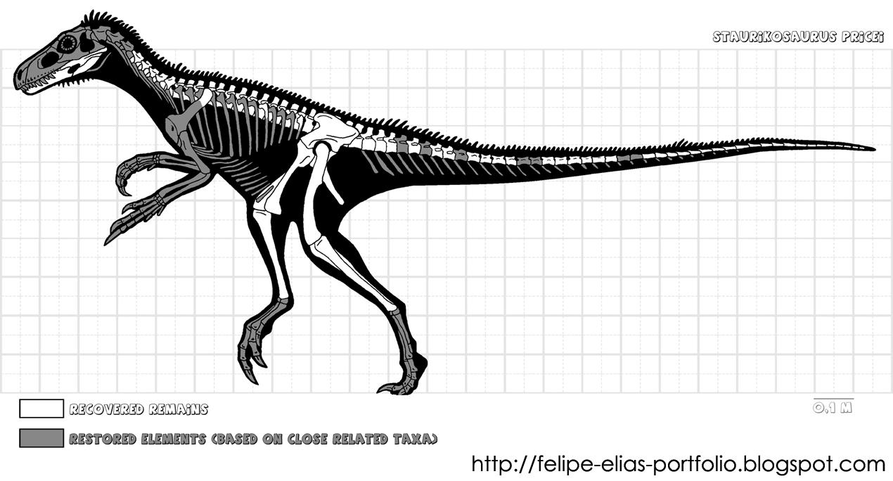 Известные кости скелета ставрикозавра