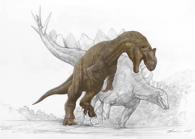 Лечге всего было убить стегозавра, прокусив ему шею