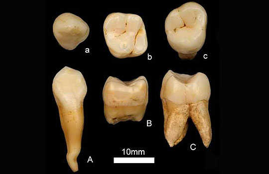 Китайские антропологи развенчали африканскую прародину человечества