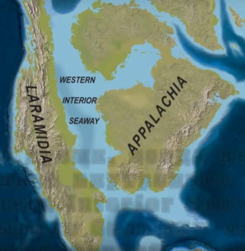 Место обитания архелона