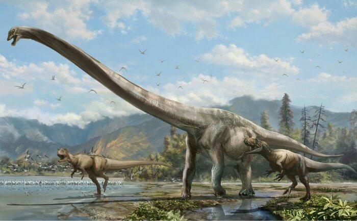 Аллозавры могли нападать на диплодока стаями