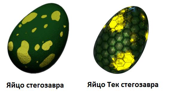 Яйцо стегозавра и тек стегозавра