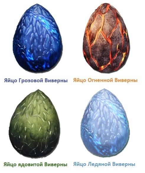 Яйца Виверны